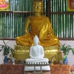 Samnakpattibattham Thongkhamnimitdhammaram สํานัก ปฏฺิบัติธรรม ทองคํานิมิตธรรมาราม