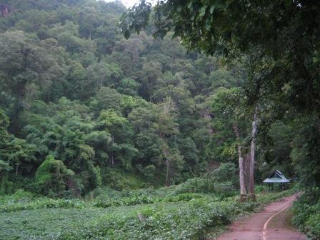 Cave-road2