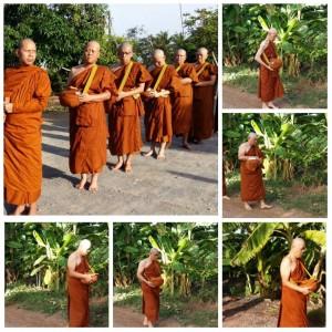 pindapat-monks